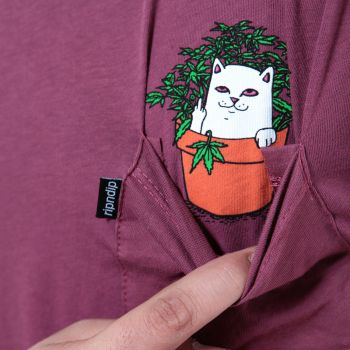 Cat Nip Pocket